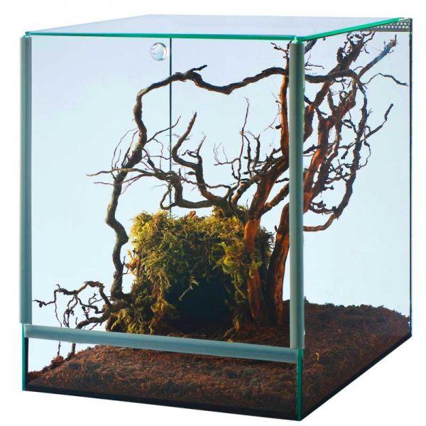 Spinnenterrarium mit Falltür 20x20x30 cm