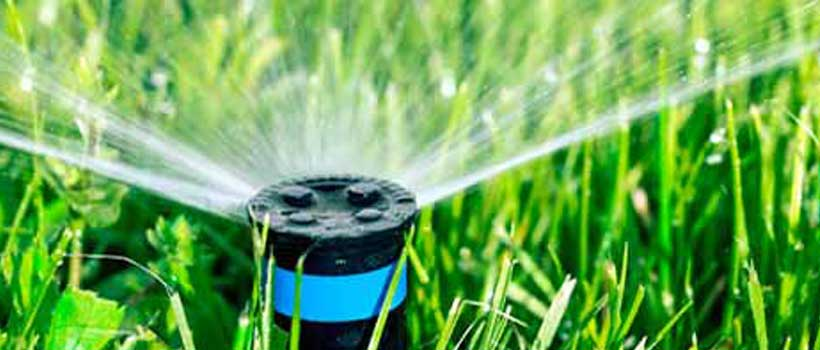 5 tolle Tipps zur Gartenbewässerung