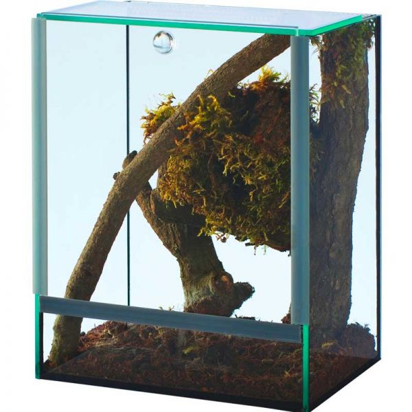 Spinnenterrarium mit Falltür 15x15x20 cm