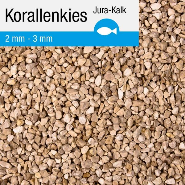 Aquarium Jura- Korallenkies 10 kg 2-3 mm - Teichpoint