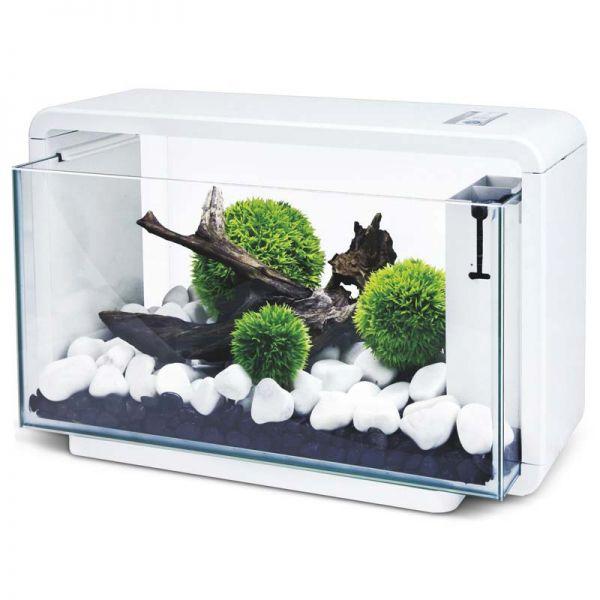 Hailea E25 Natur Biotop - Aquariumset für Aquascaping