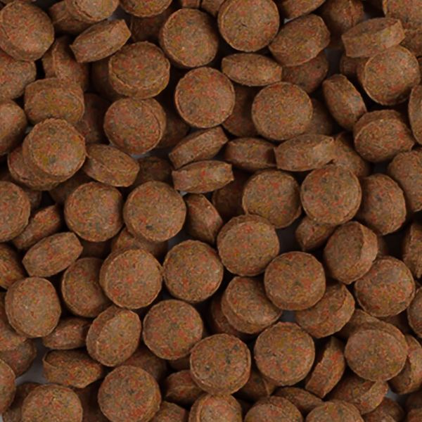 Tropical BL Staple Tablet B Bodenfuttertabletten 1 kg